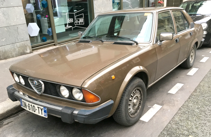 Big brown Alfa